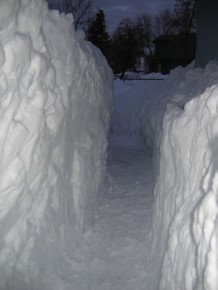 Three of us kept this walk open despite shoulder-deep snow.