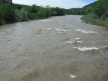 flowing Down the Animas River