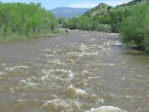 "Facing north, ""up"" the Animas River"